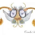 tete-de-papillon-en-miroir